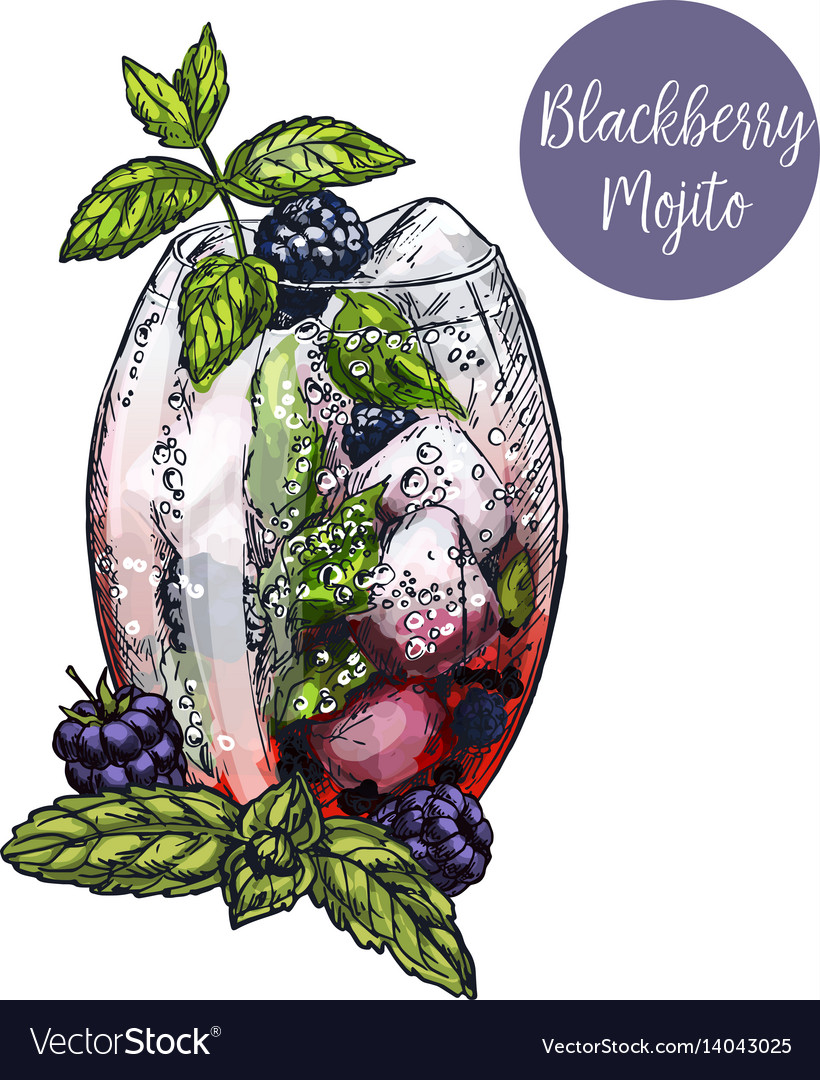 Colorful sketch of mojito cocktail