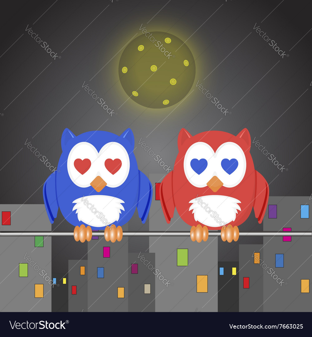 Owlet two lovers in the night city