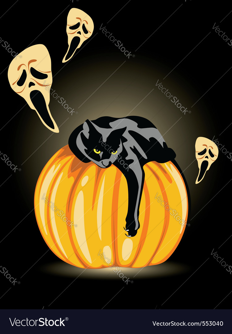 Halloween Pumpkin Ghost And Black Cat On A Black B Vector Image