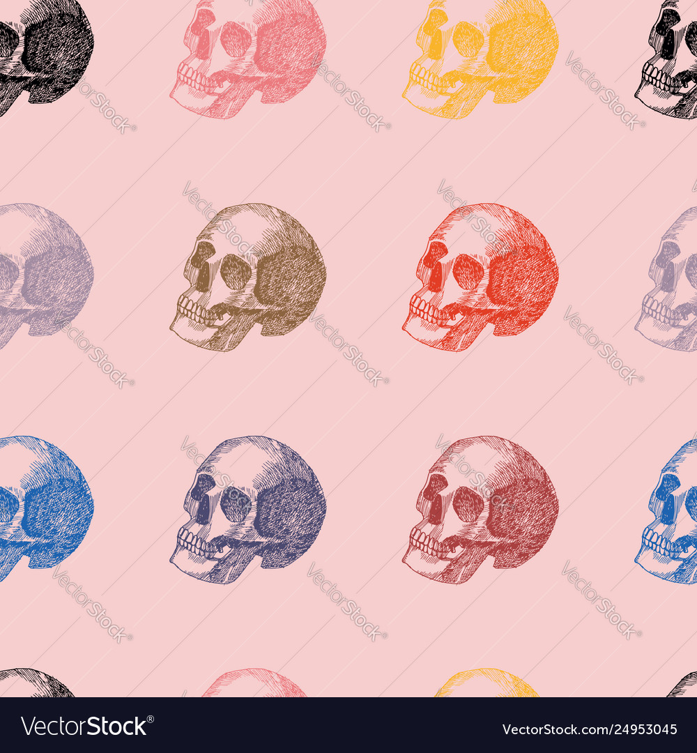 Multicolor hand drawn skull seamless pattern pink vector