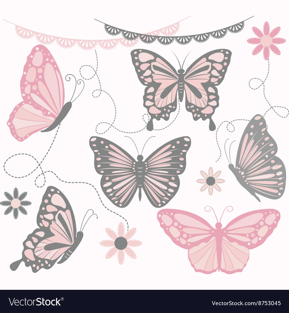 Pink and Grey Butterfly Collections