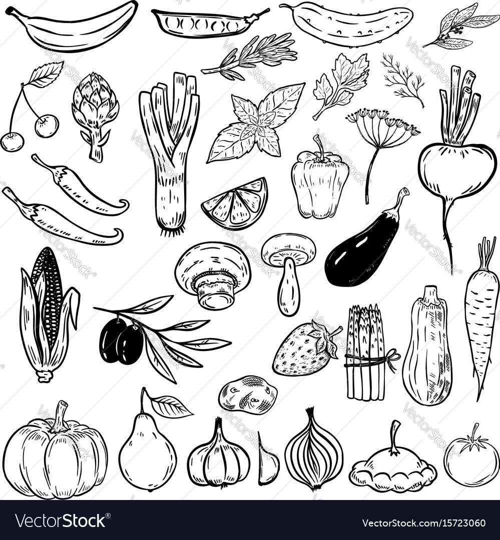 Set of hand drawn vegetables and fruits design