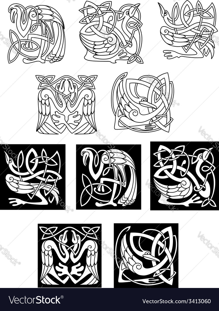 Stork and heron birds in celtic patterns vector image