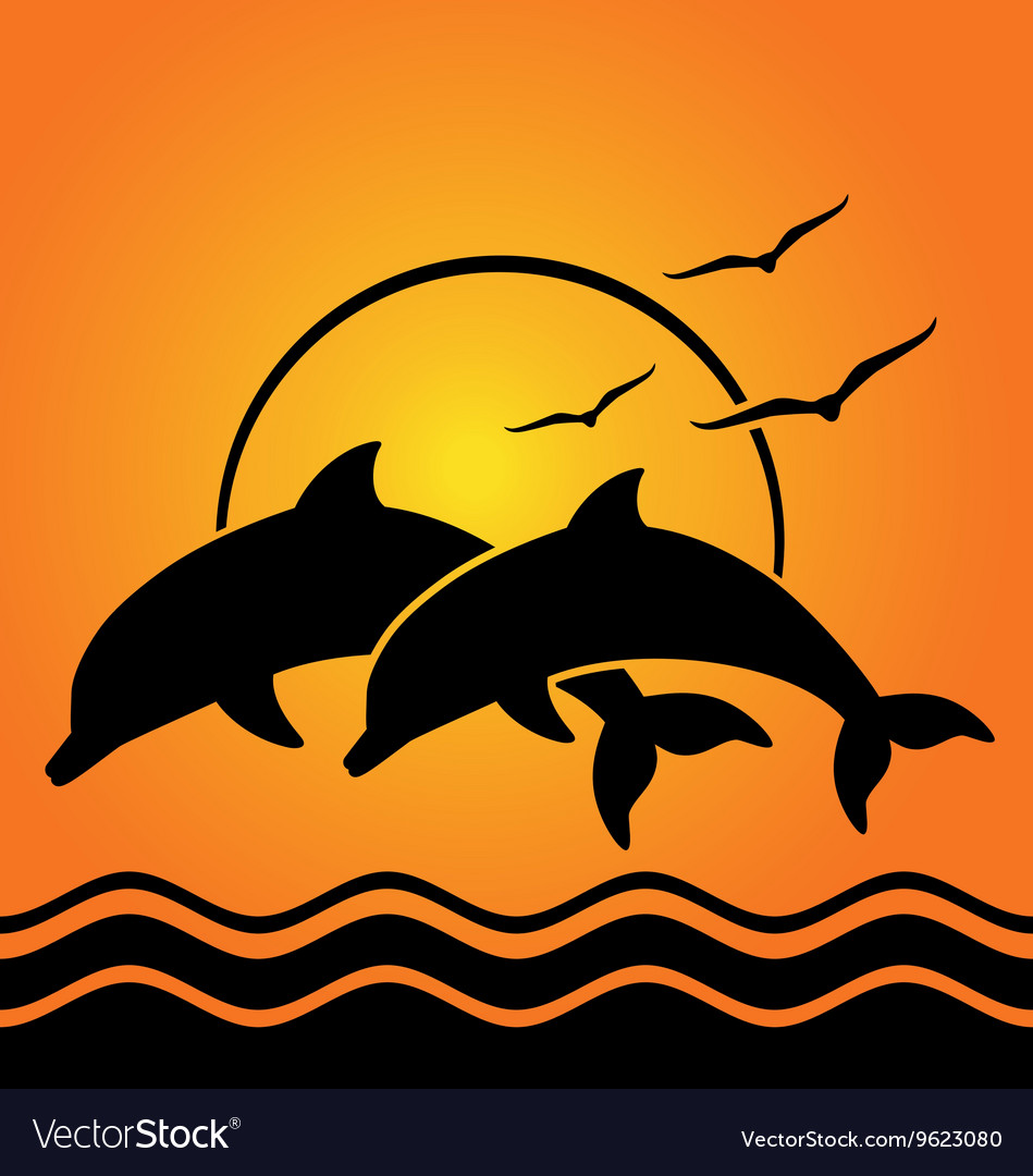 Dolphin silhouettes on sunset background