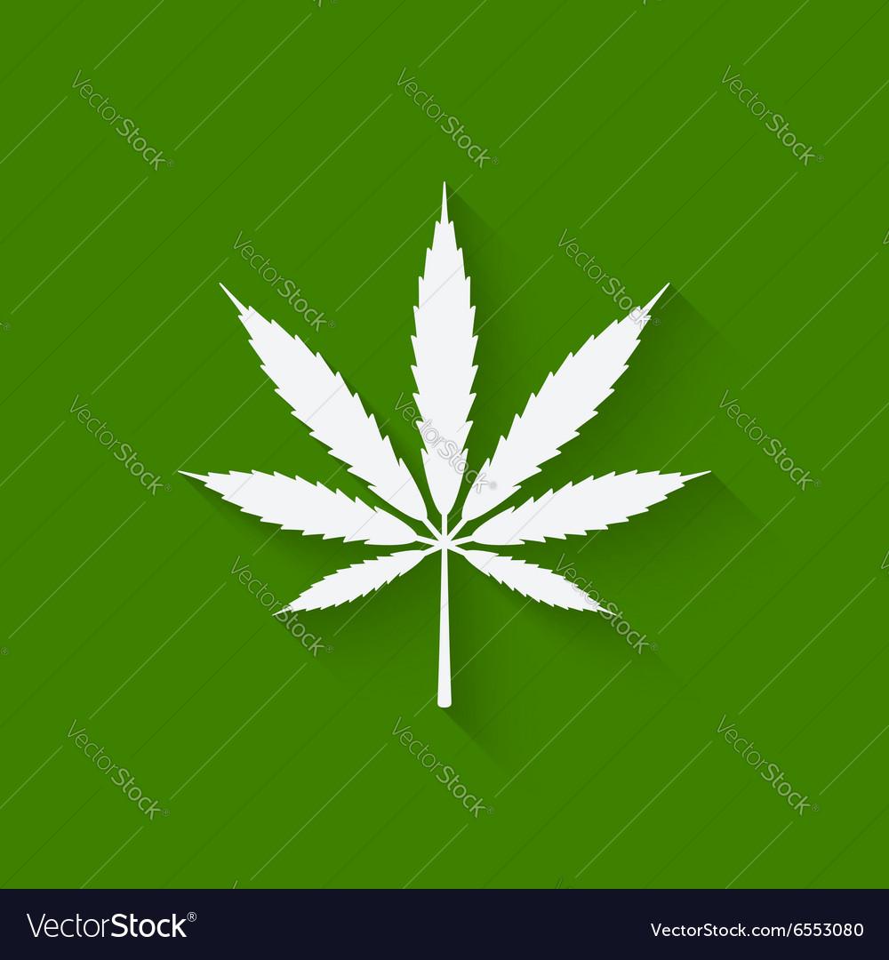 Marijuana leaf on green background