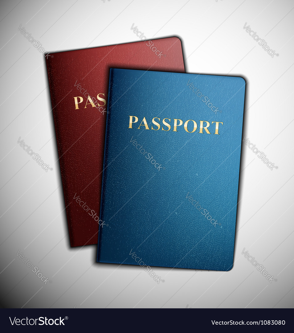 Two passports vector image