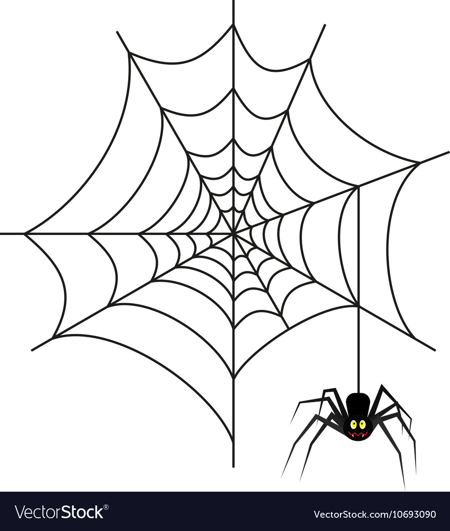 halloween spider on web royalty free vector image
