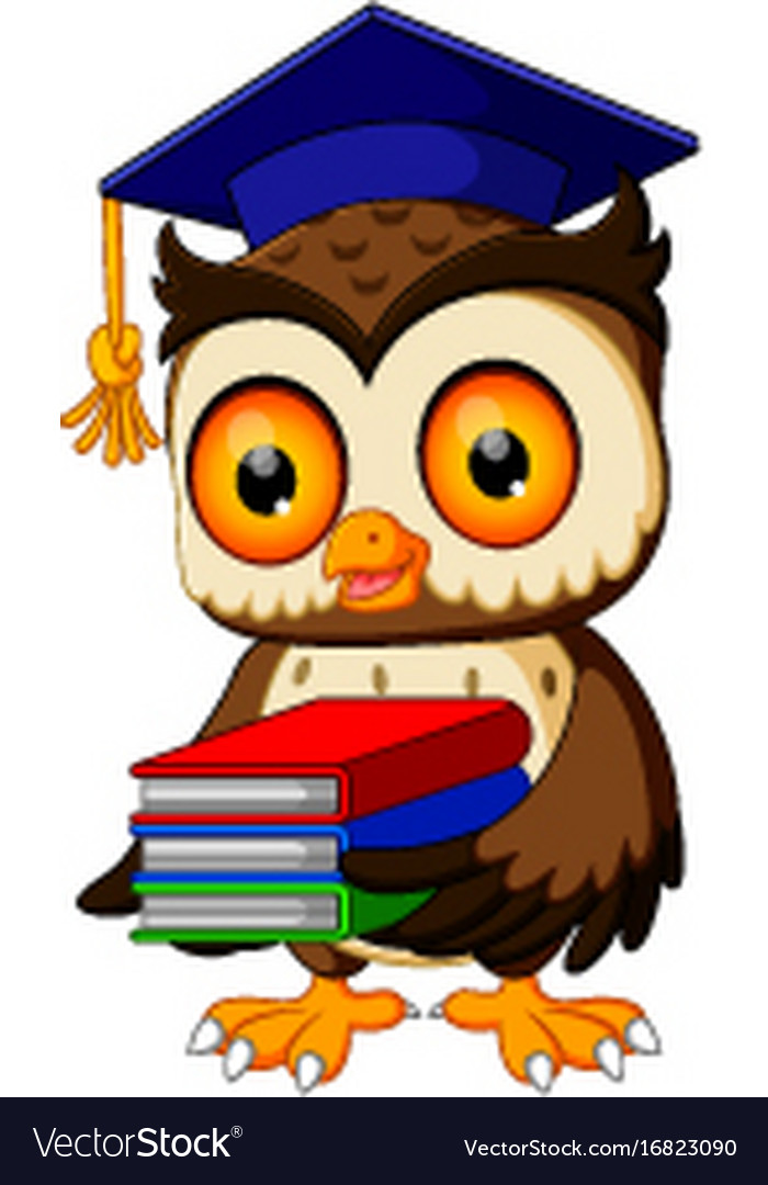 owl in the graduate carrying book royalty free vector image