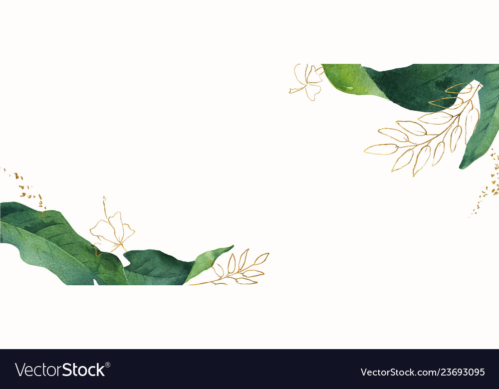 Watercolor banner tropical leaves isolated