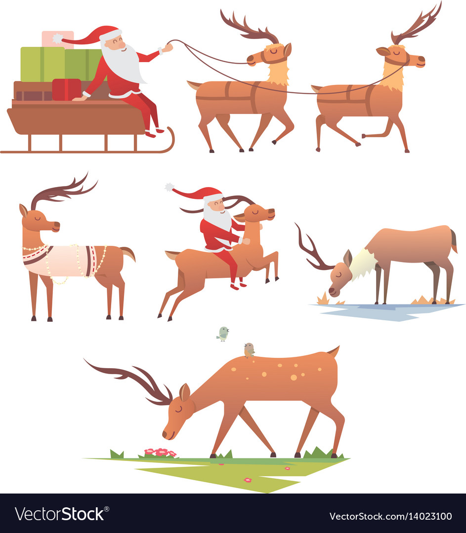 Christmas reindeer holiday mammal deer xmas