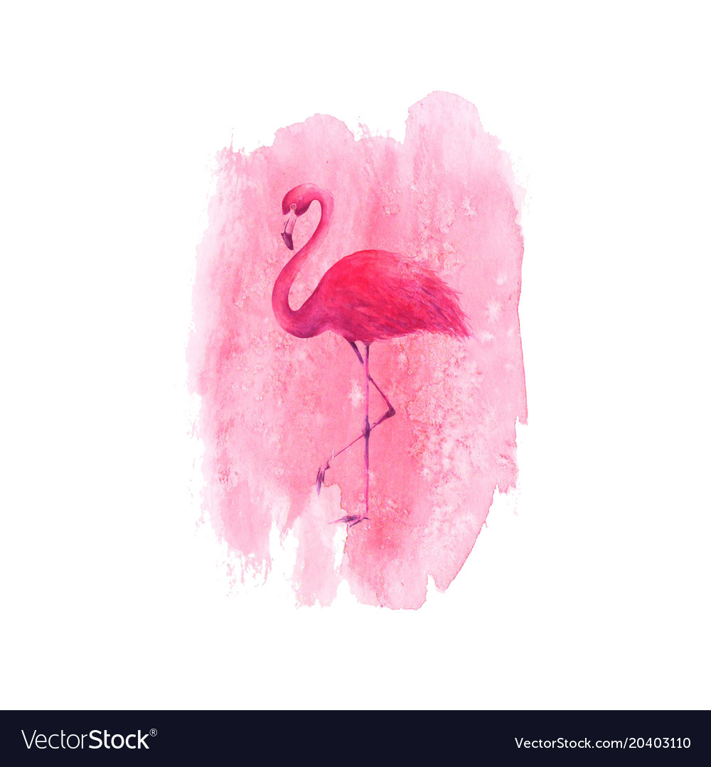 Flamingo on watercolor pink spot background