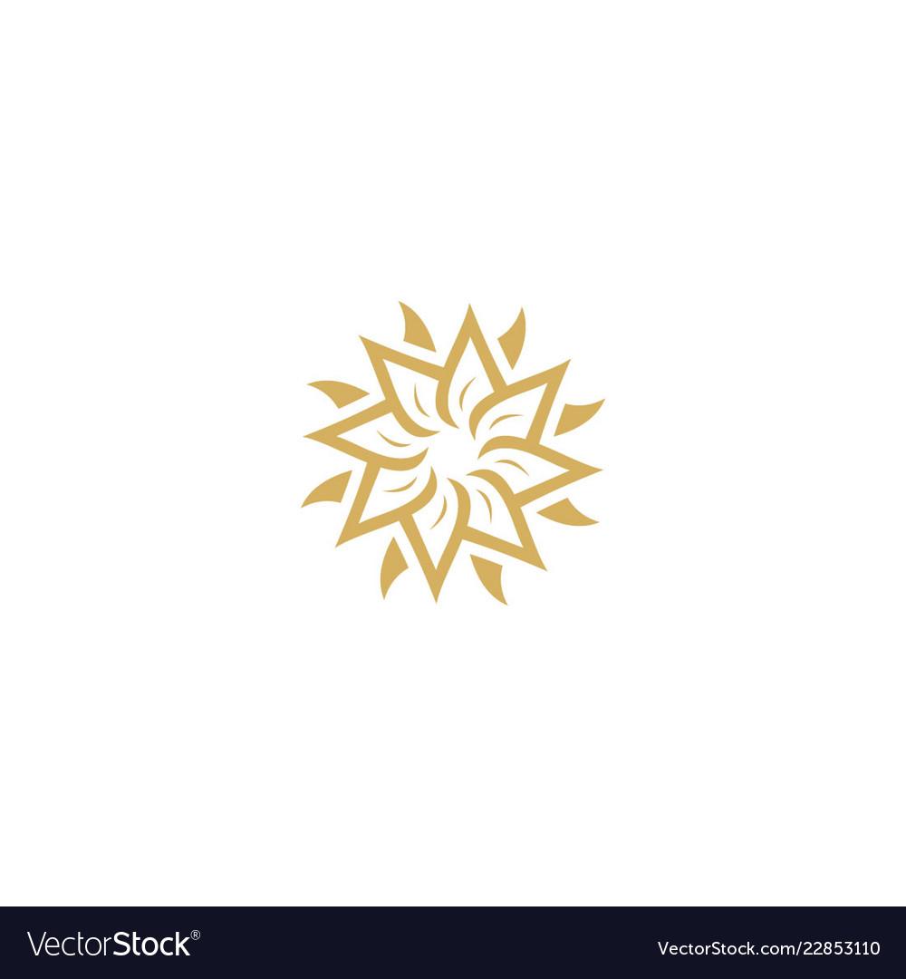 Star flower circle company logo