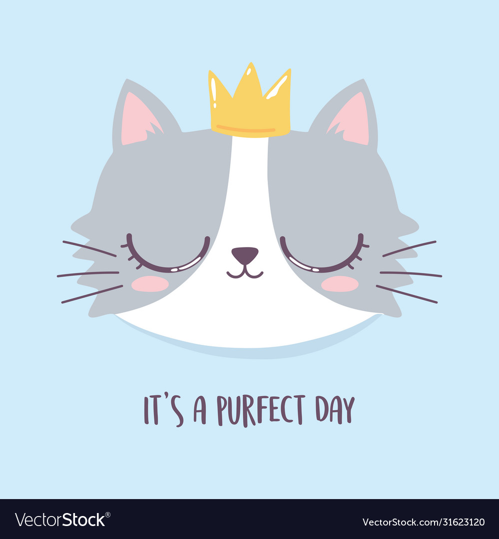 Cute Cat Face With Crown Perfect Day Cartoon Vector Image We believe in helping you find the product that is if you are interested in cat with crown cartoon, aliexpress has found 627 related results, so you can compare and shop! vectorstock