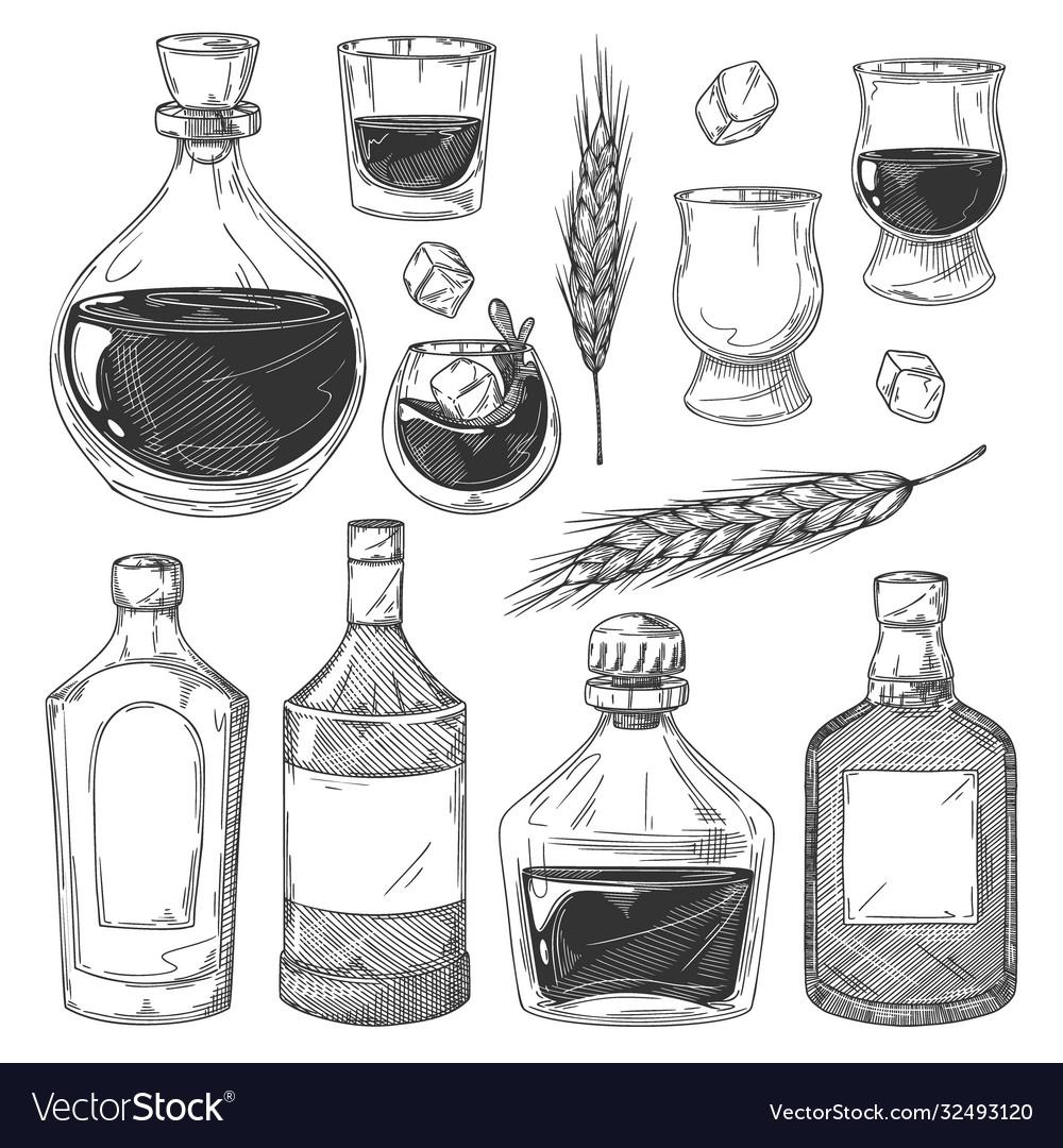 Whiskey bottles sketch set