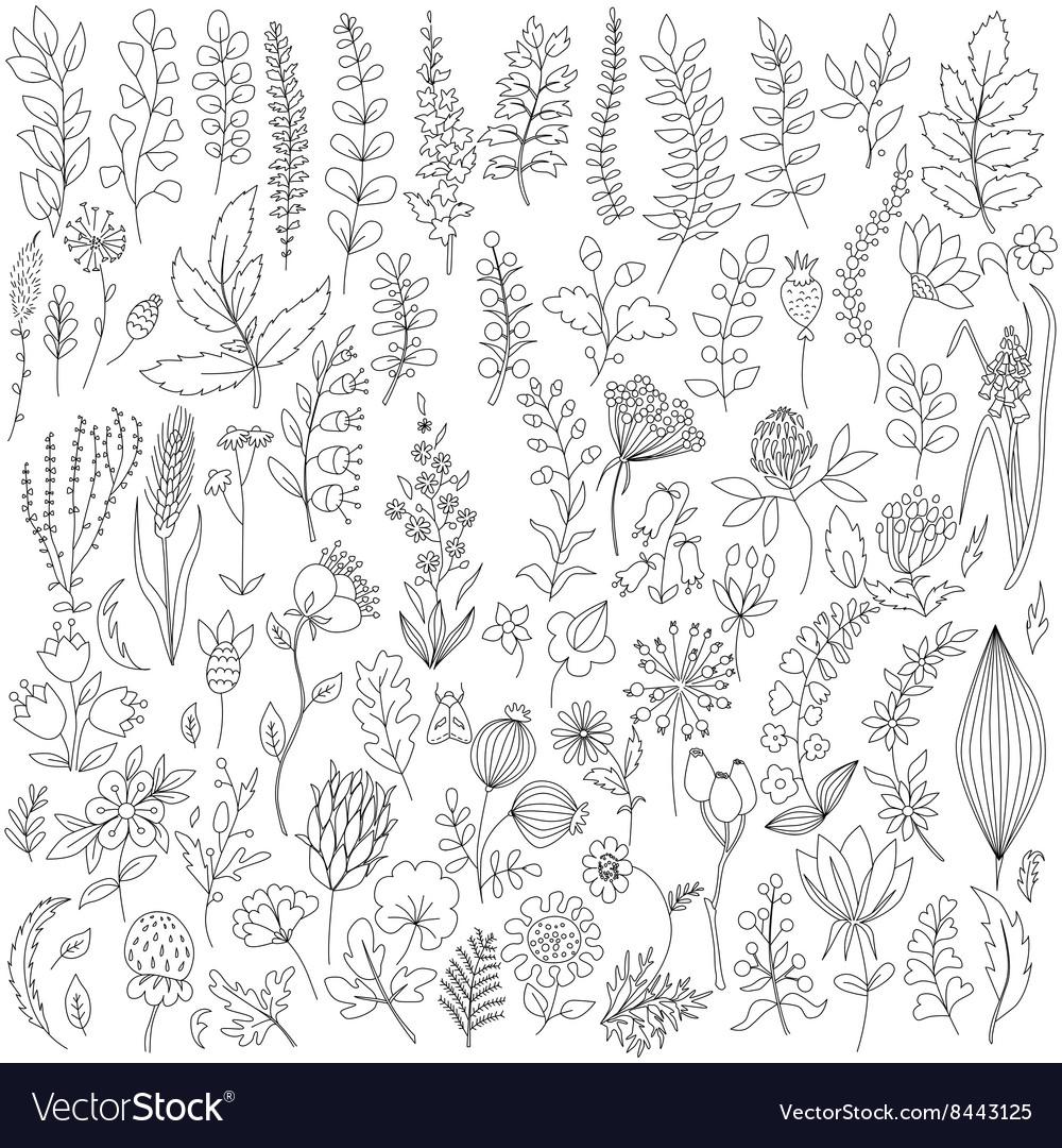 Handmade flowers and leaf elements set vector image