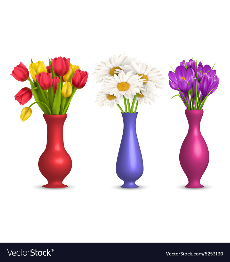 Flowers in vases isolated on white