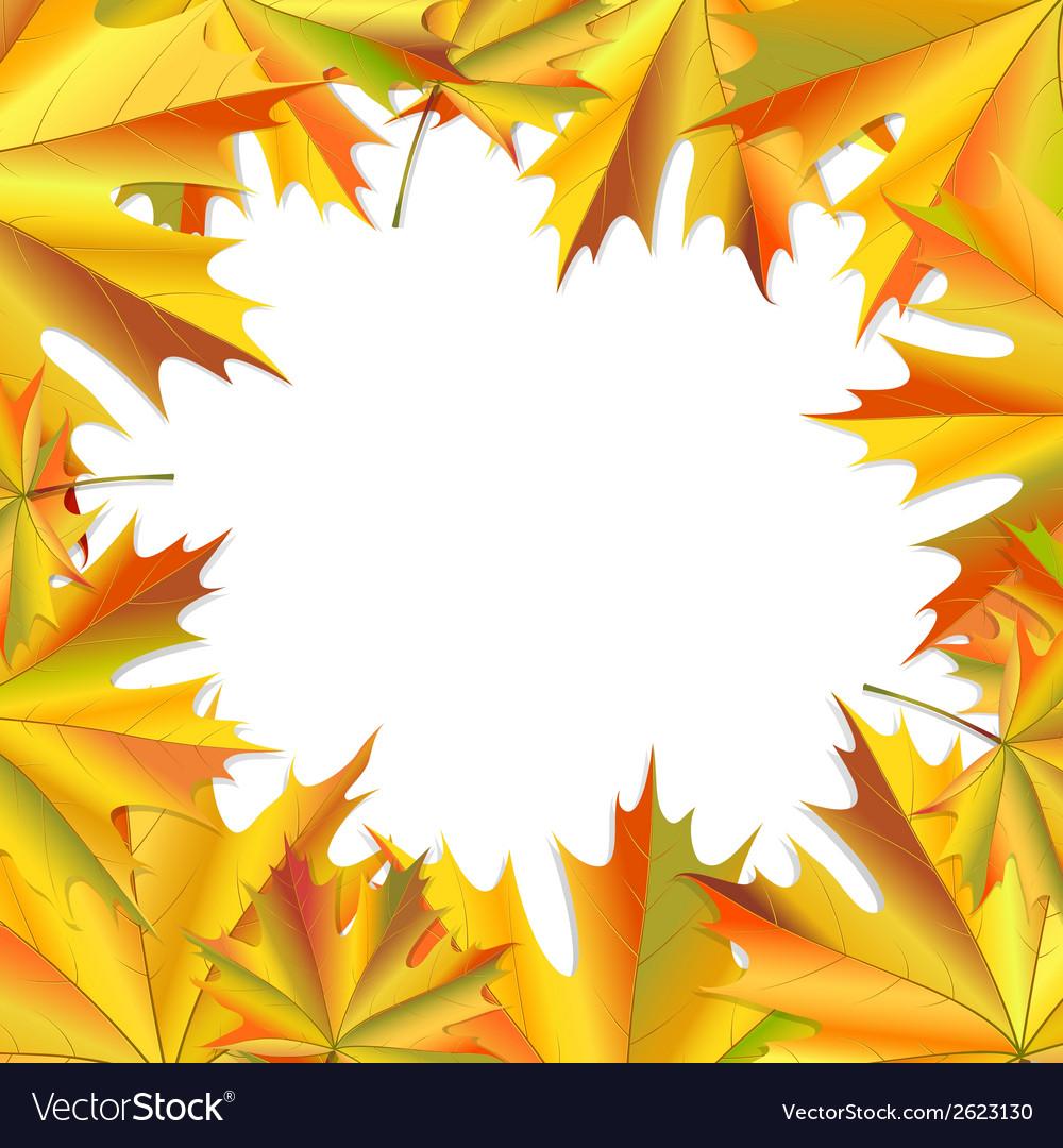 Frame of maple leaves