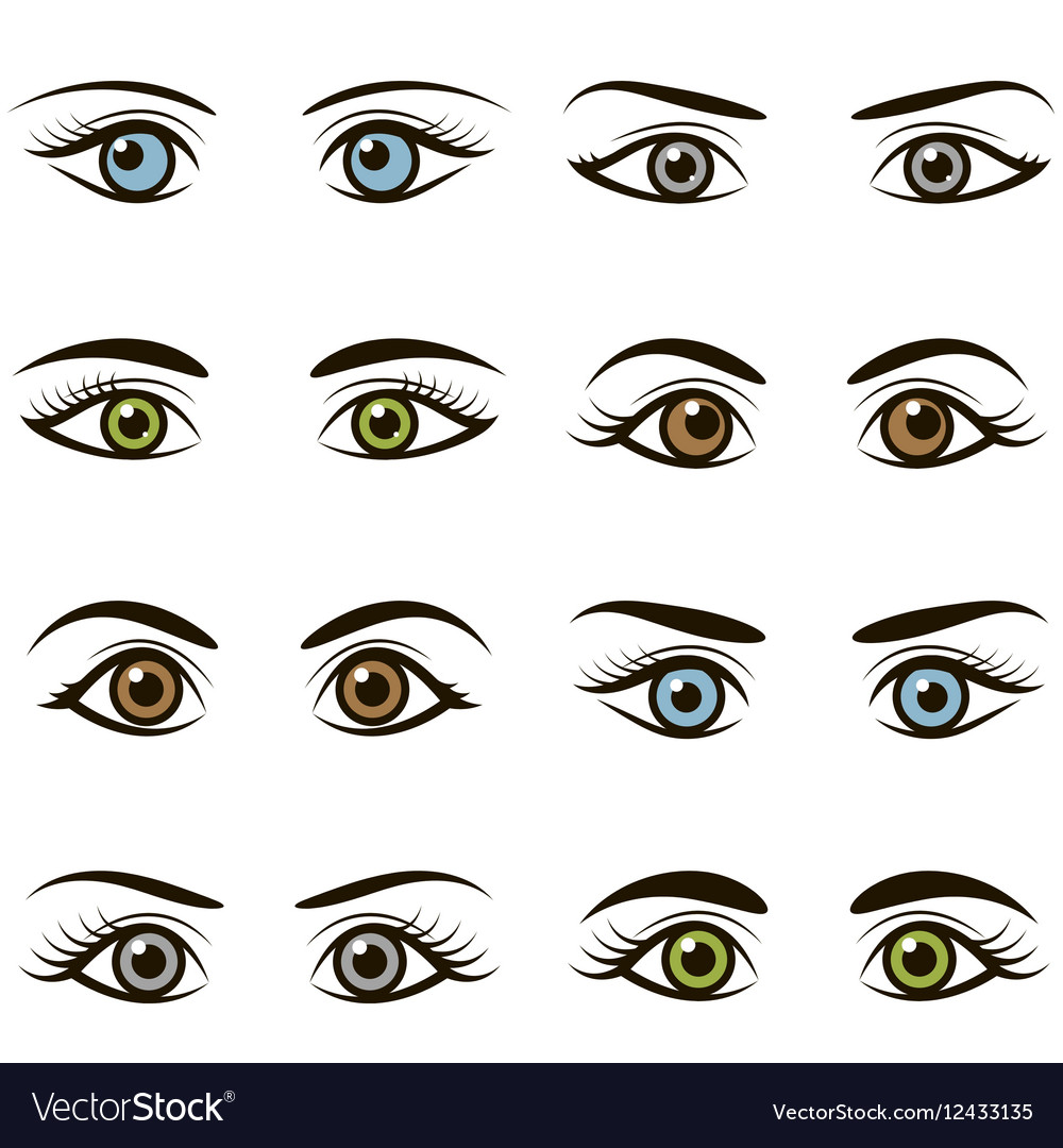 Set of eyes and brows isolated on white background