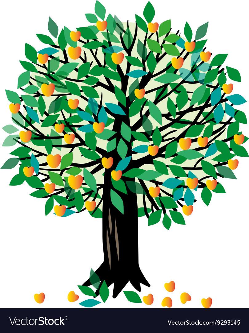 рисунок абрикоса дерево про