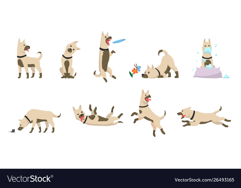 Cartoon dog set dogs tricks icons and action