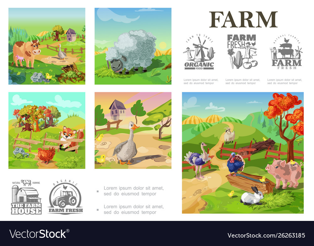 Cartoon farm animals colorful composition