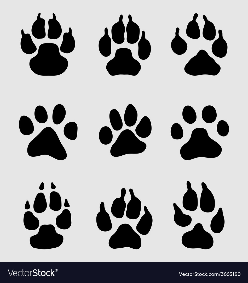Paw dogs