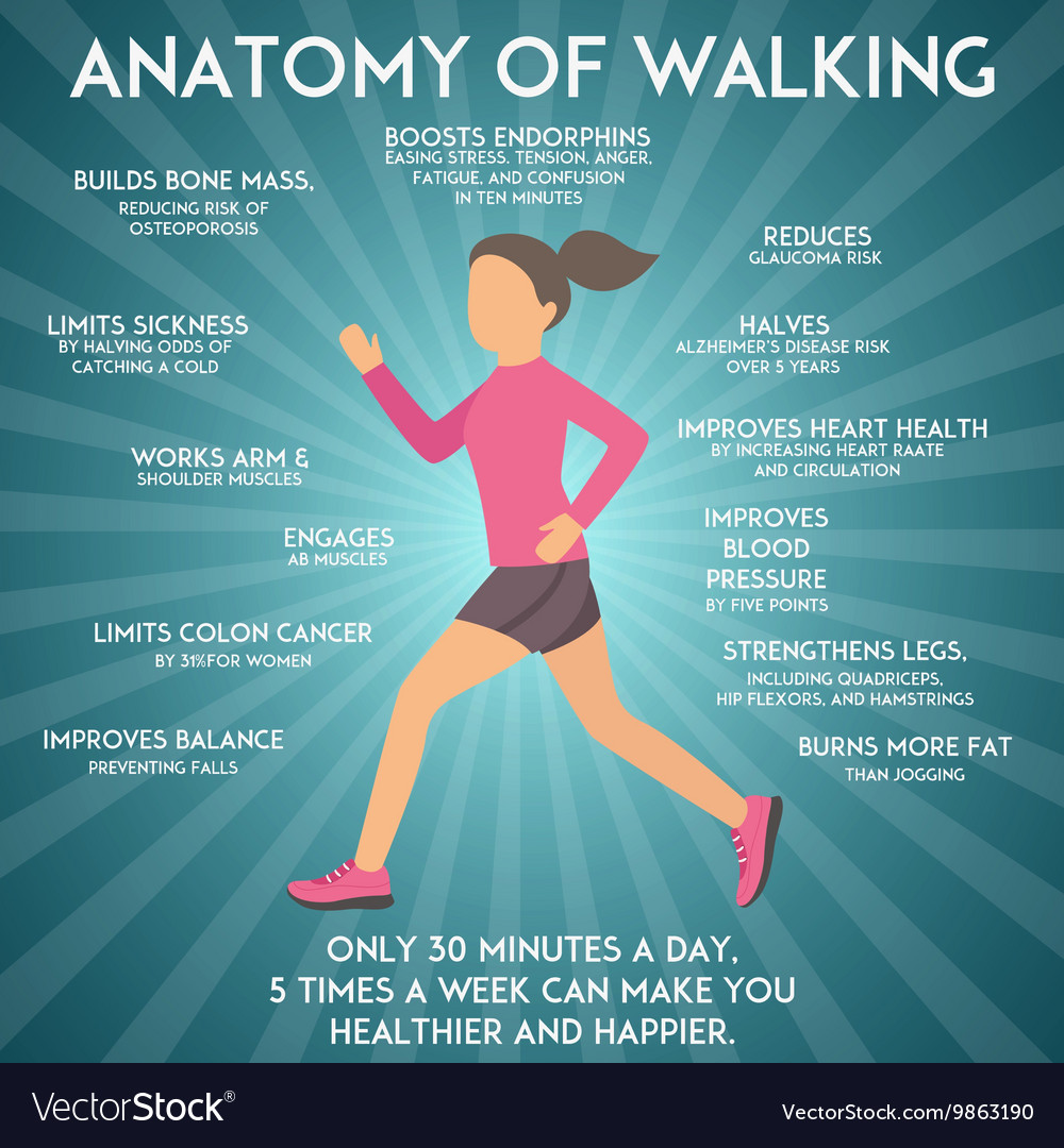 Walking effects infographic Royalty Free Vector Image