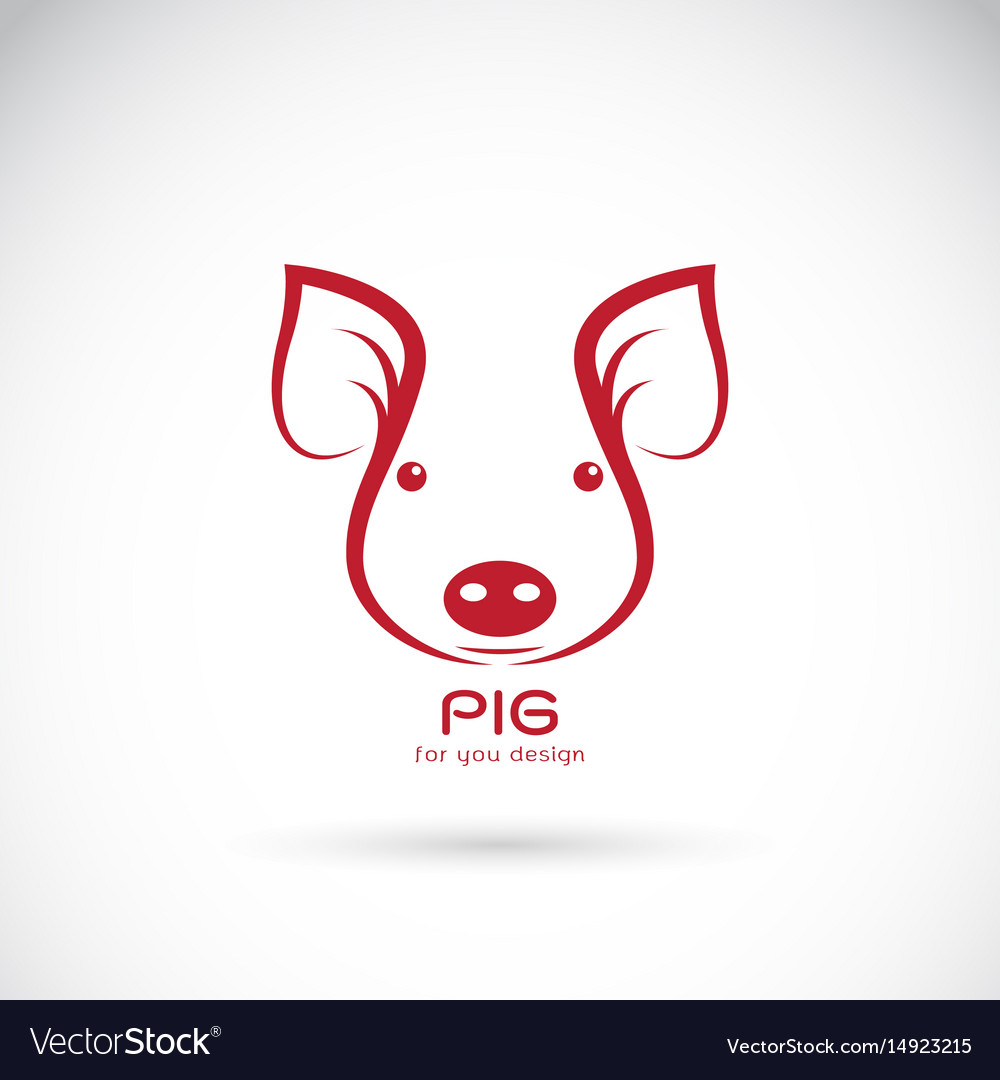 Pig head on white background farm animals vector image