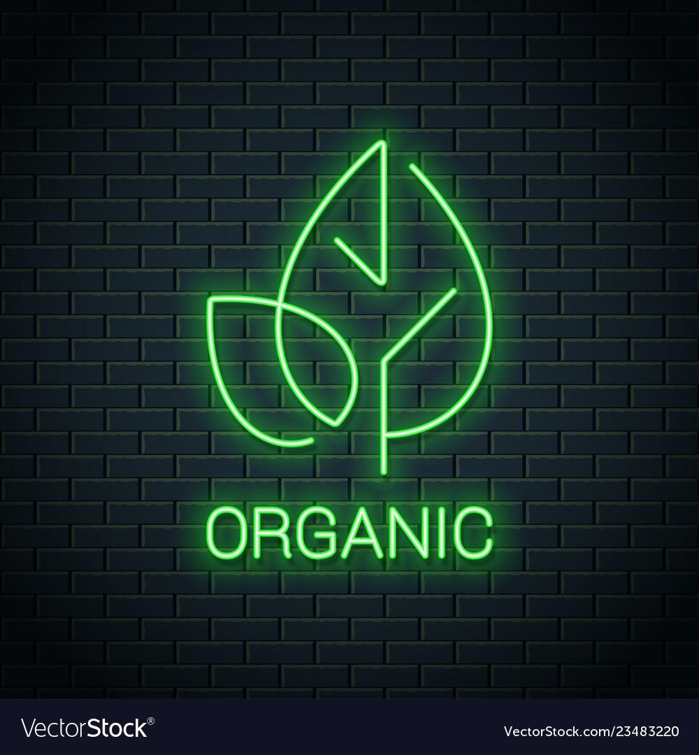 Green leaf neon logo organic eco product