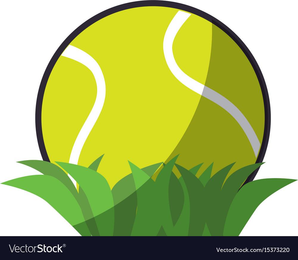 Tennis ball sport