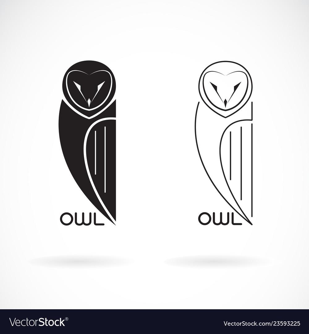 An owls design on white background bird icon wild
