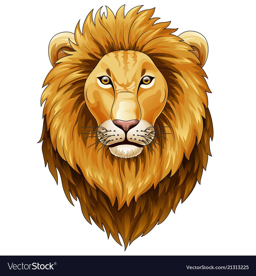 Animal lion leo art basic book cartoon char
