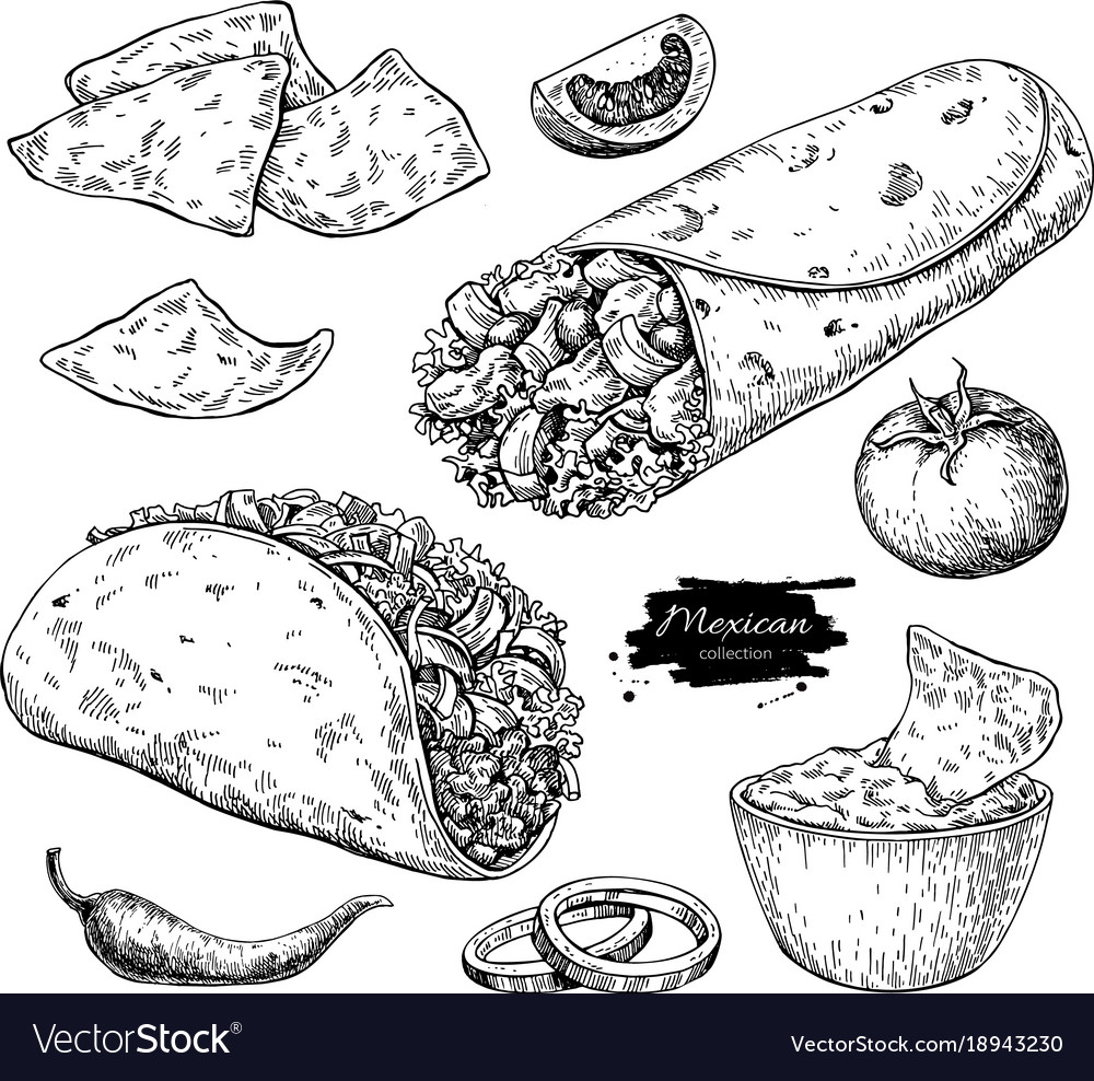 Mexican food drawing traditional cuisine