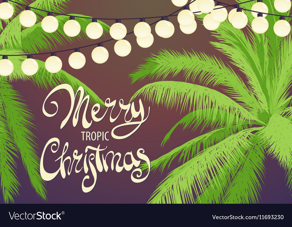 original christmas palm trees vector image - Christmas Palm Tree Pictures
