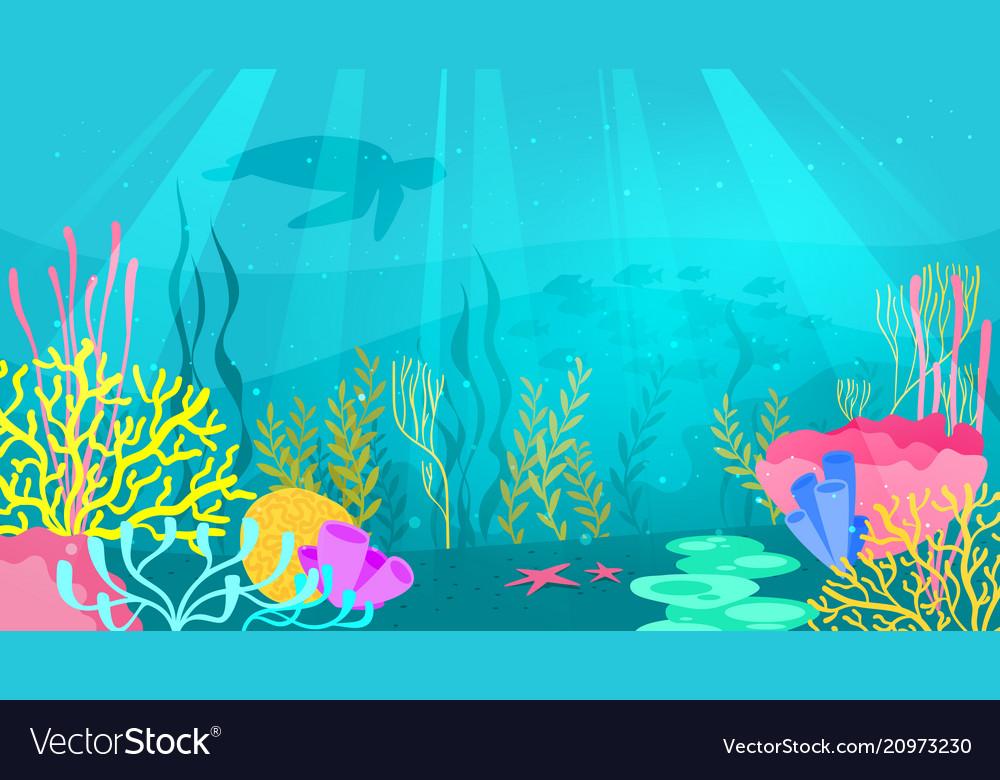 Underwater background with sea flora