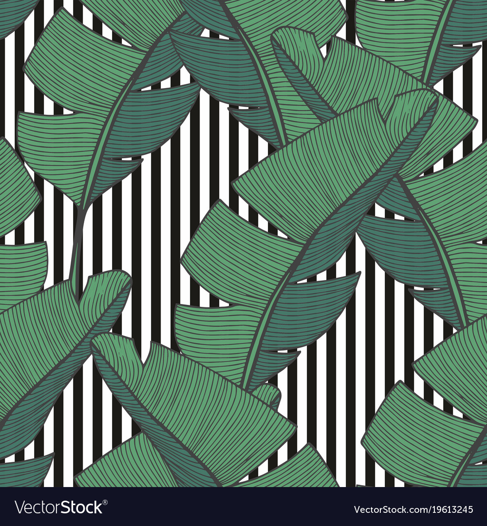 Seamless pattern with banana leaves for design