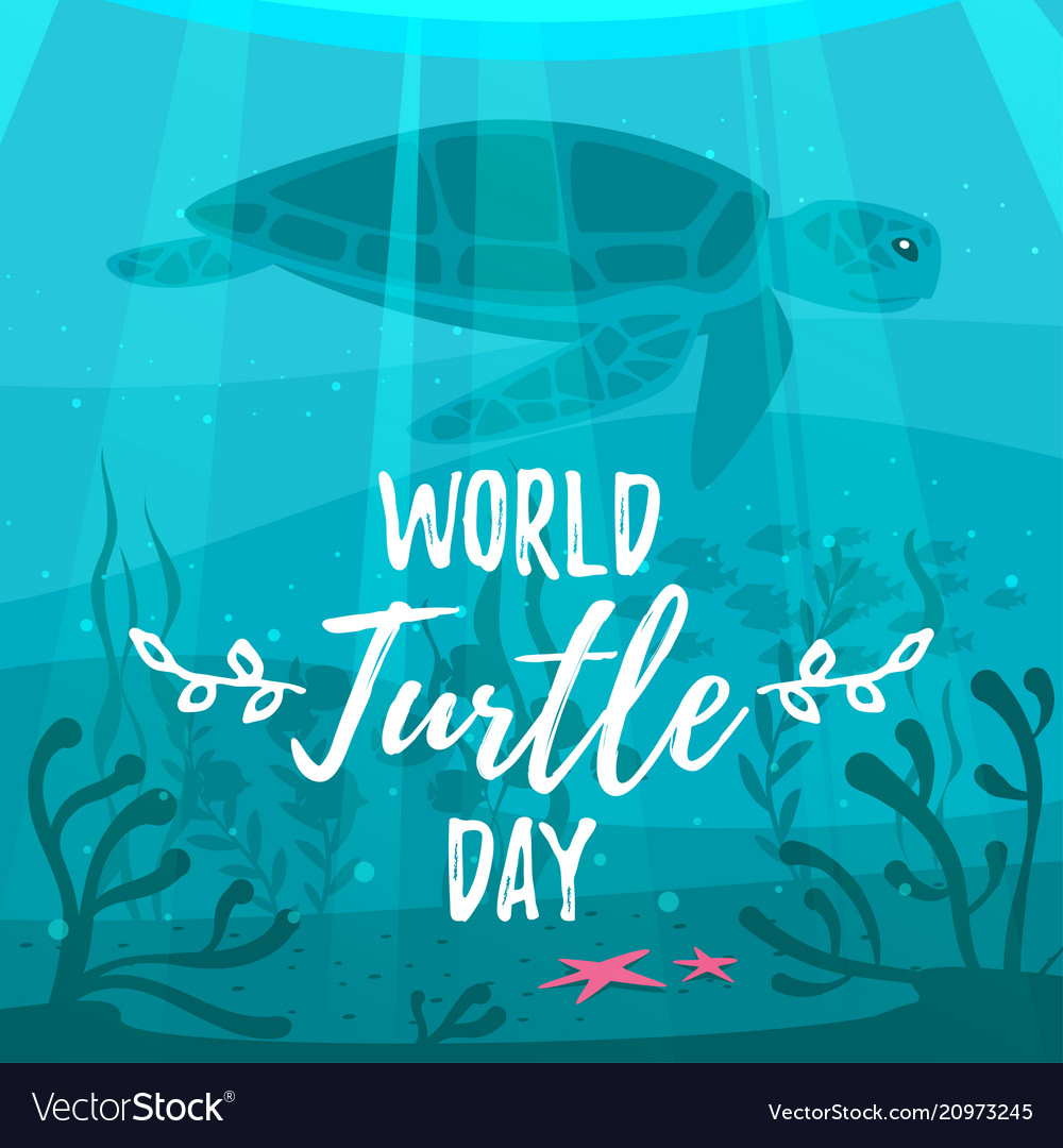 World turtle day greeting card