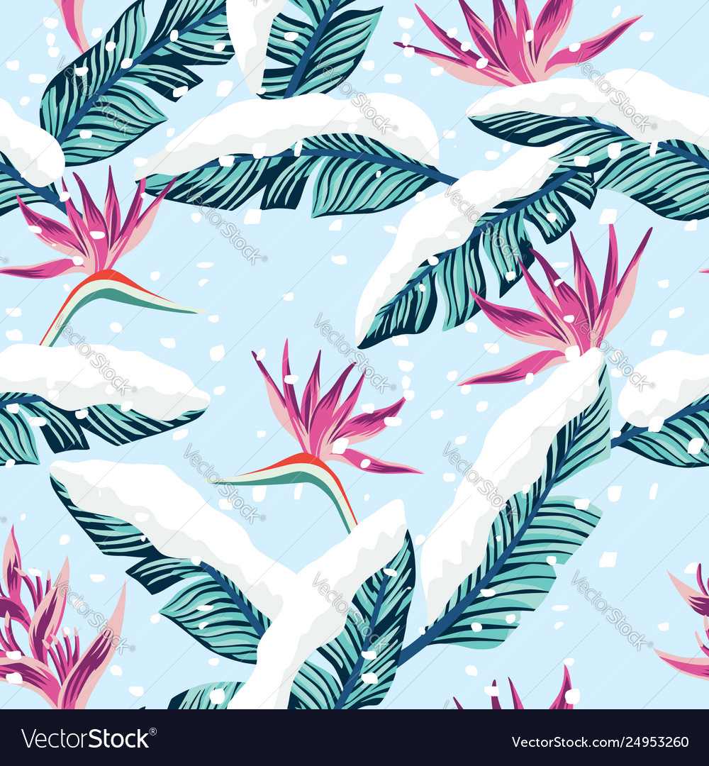 Snowy composition from blue tropical banana leaves