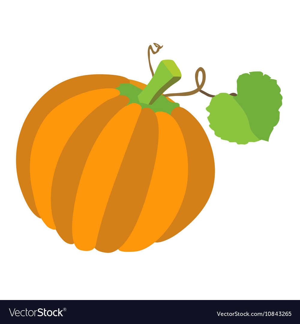 Pumpkin with leafs isolated on white background