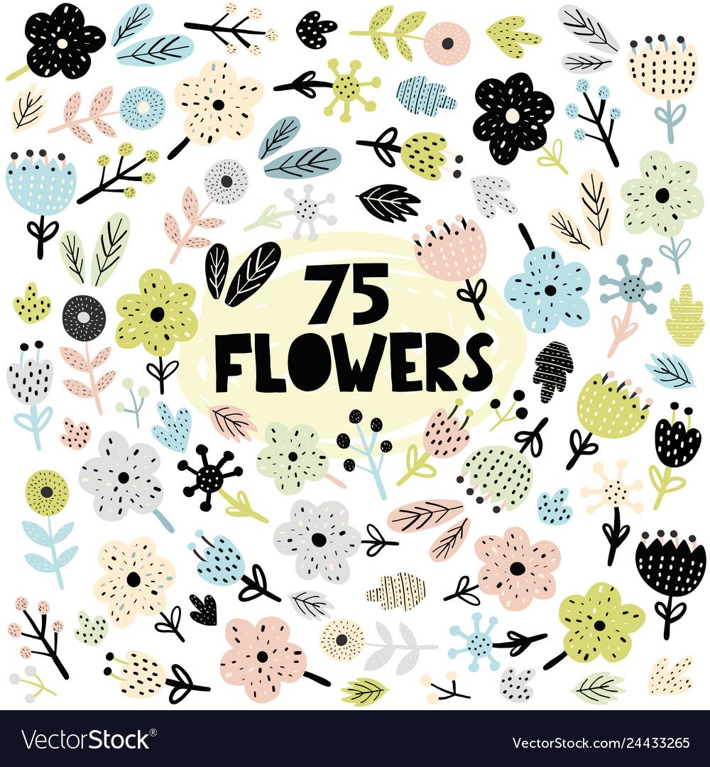 Set flowers and plants in scandinavian