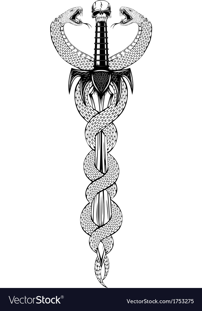 Fantasy sword and serpents vector image