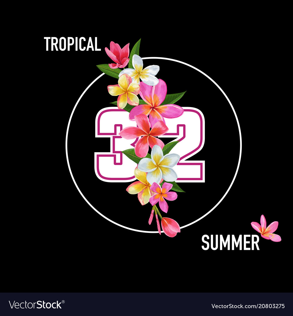 Hello summer floral poster with plumeria flowers vector image