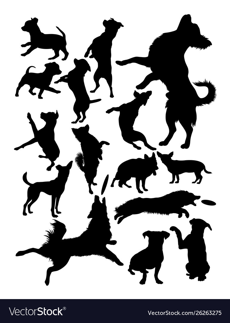 Silhouette dogs