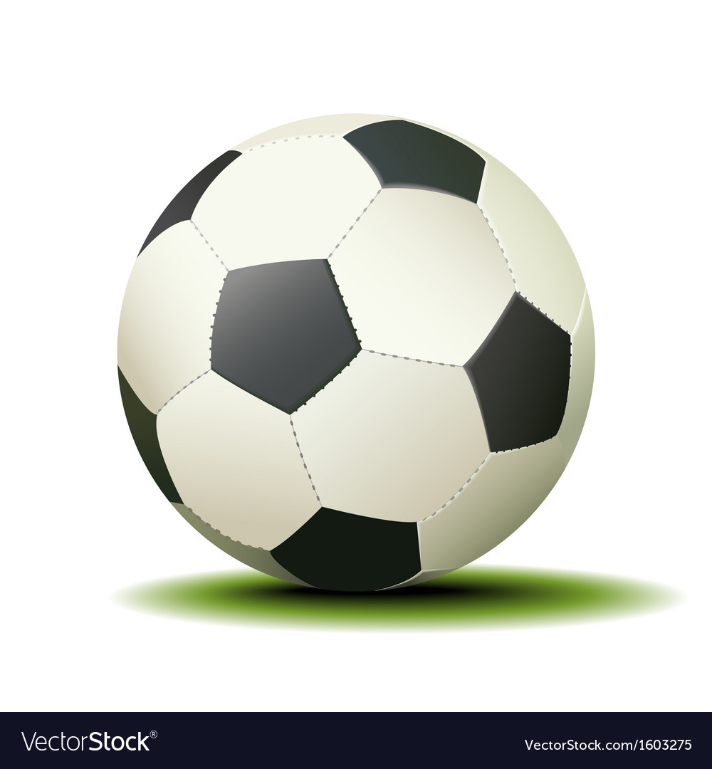 Soccer Ball Isolated on a White Background