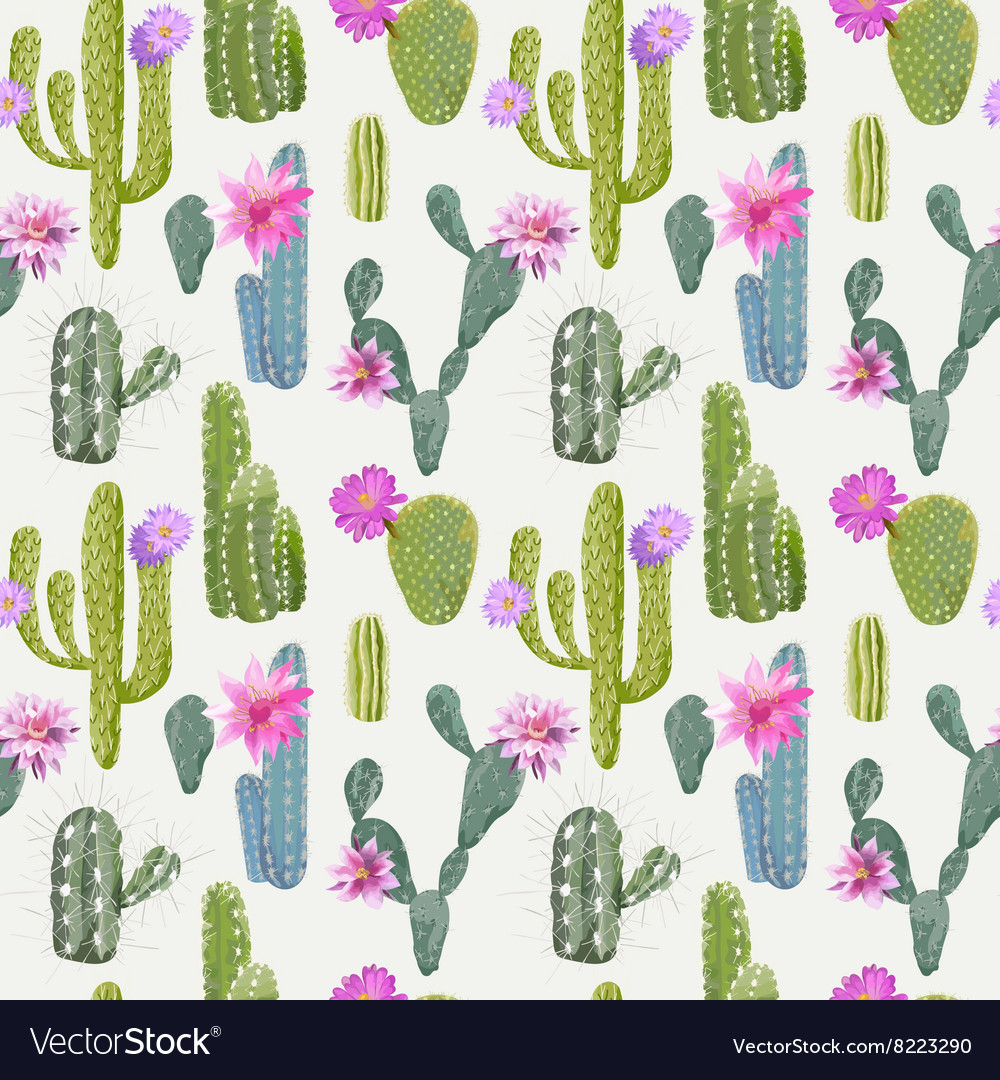 Cactus Background Seamless Pattern Exotic Plant