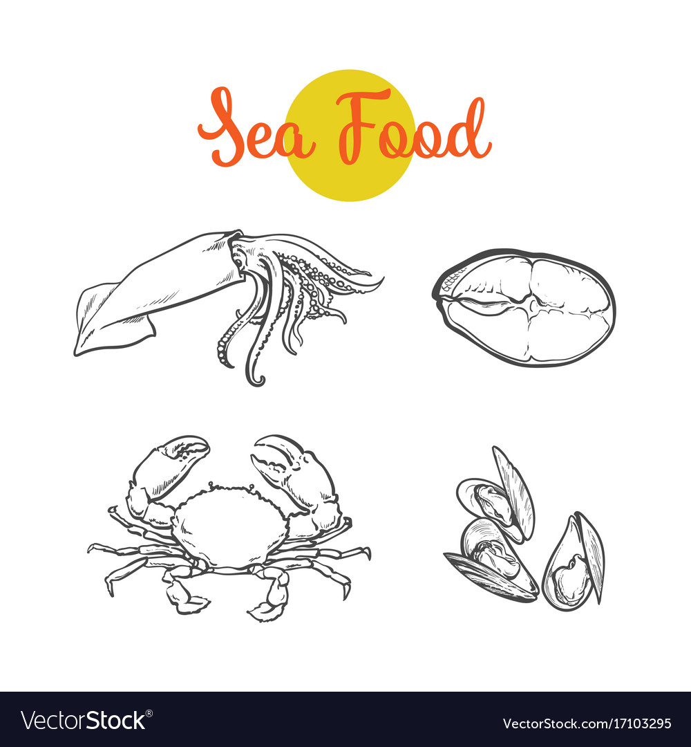 Sketch lobster tuna fish squid isolated