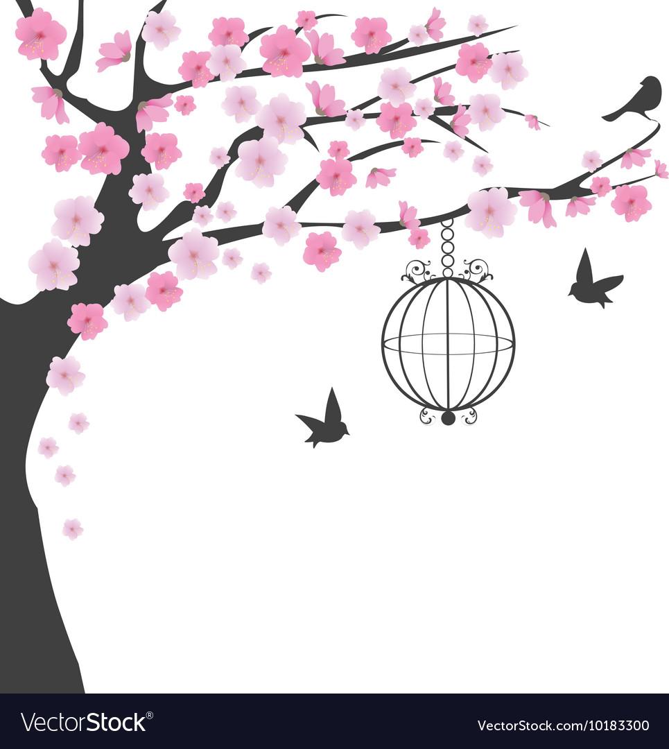 Bird cage cherry