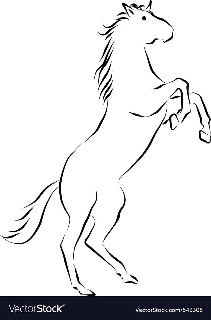 Rearing Horse Royalty Free Vector Image Vectorstock