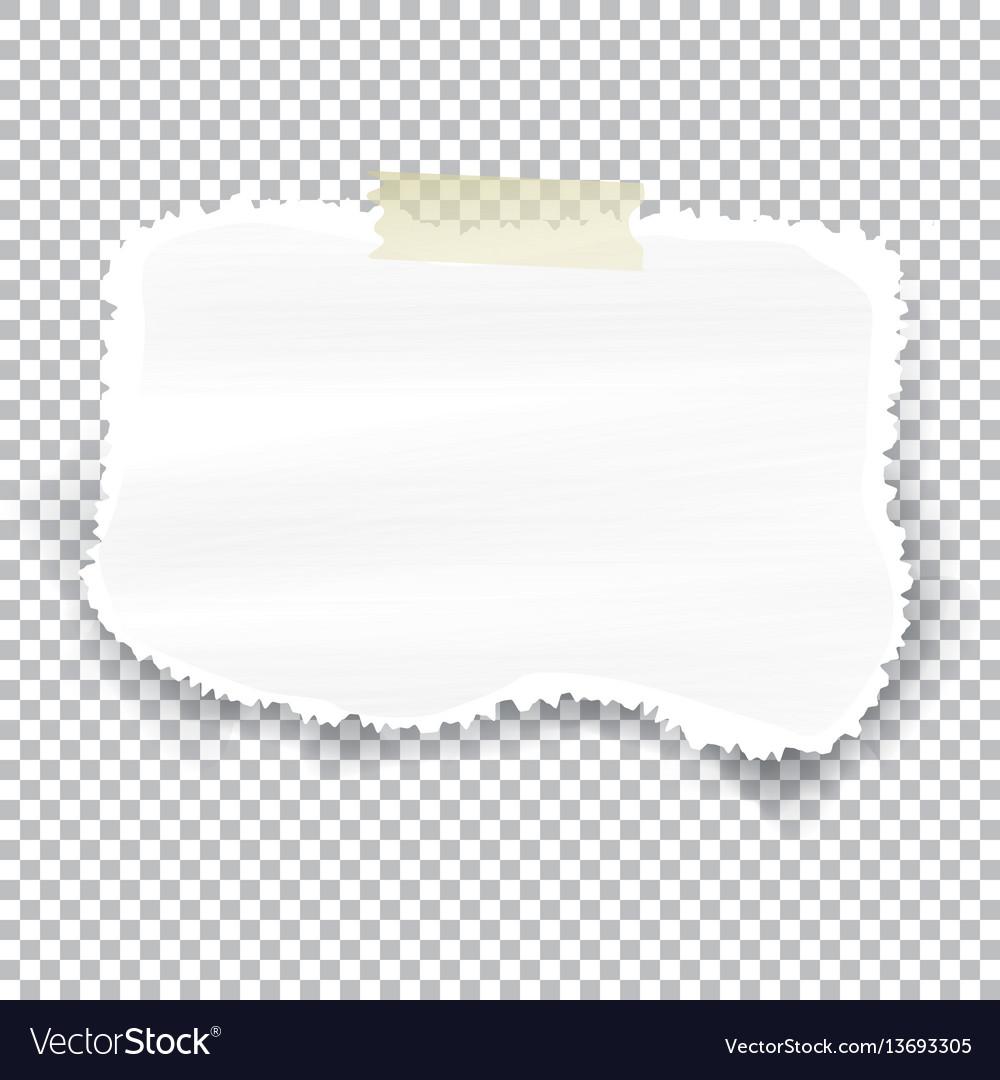 Torn Piece Of Paper Vector