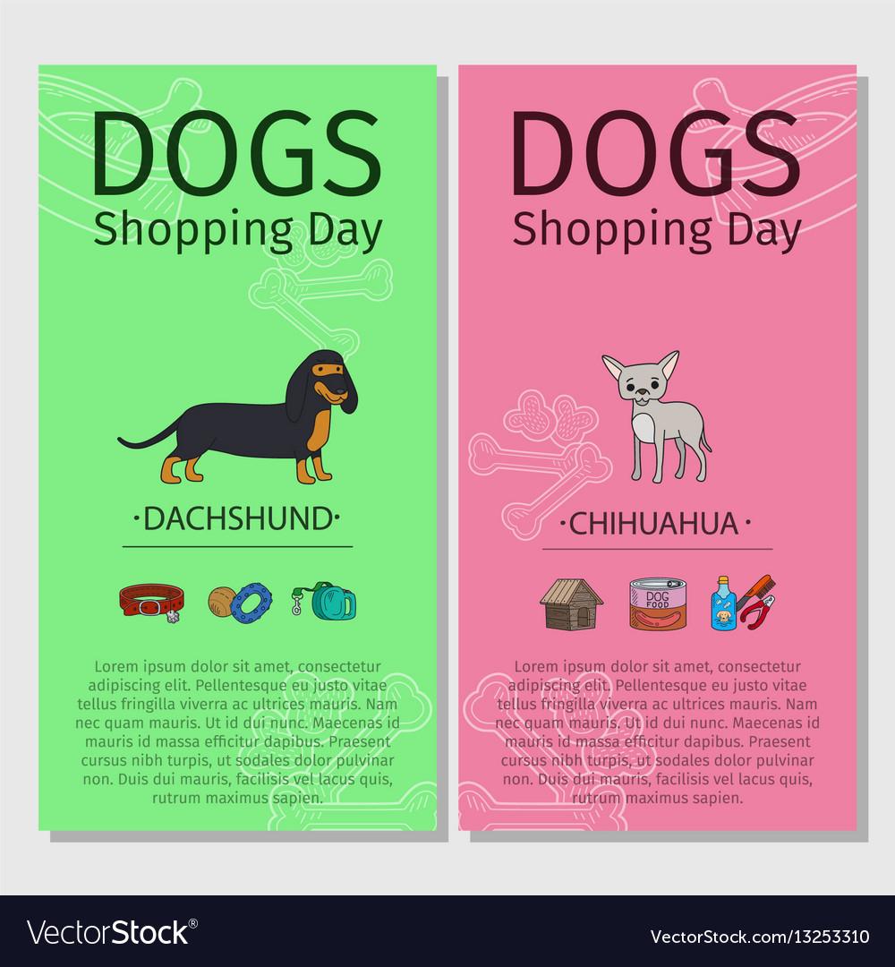 Dachshund chihuahua dog shopping day vector image